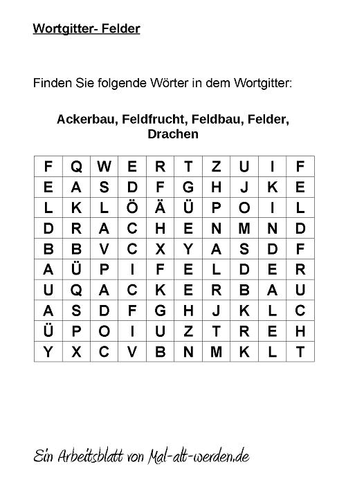 wortgitter-felder